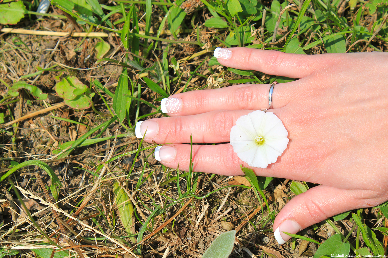 Цветок в Черногории