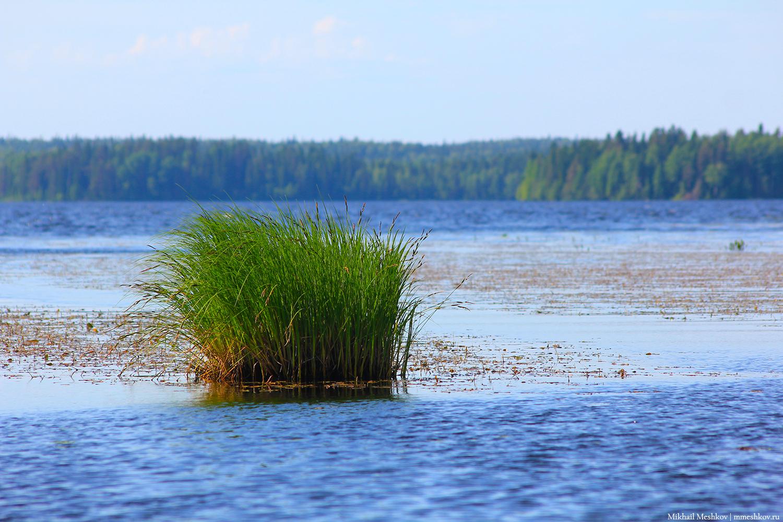 Озера и болота Карелии